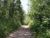 walking-trails-2
